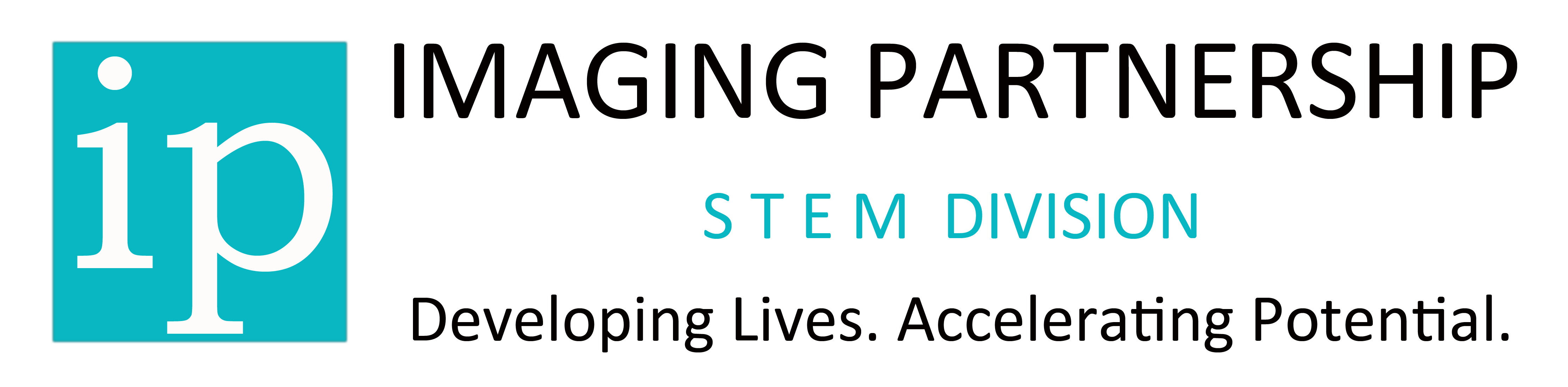 IP STEM Division